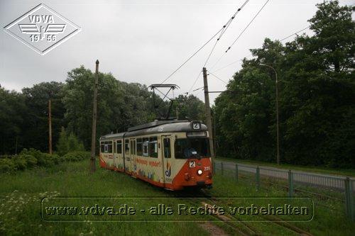 Elbing Tw235